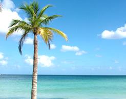 Capodanno Jamaica
