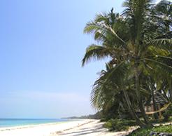 Capodanno Zanzibar